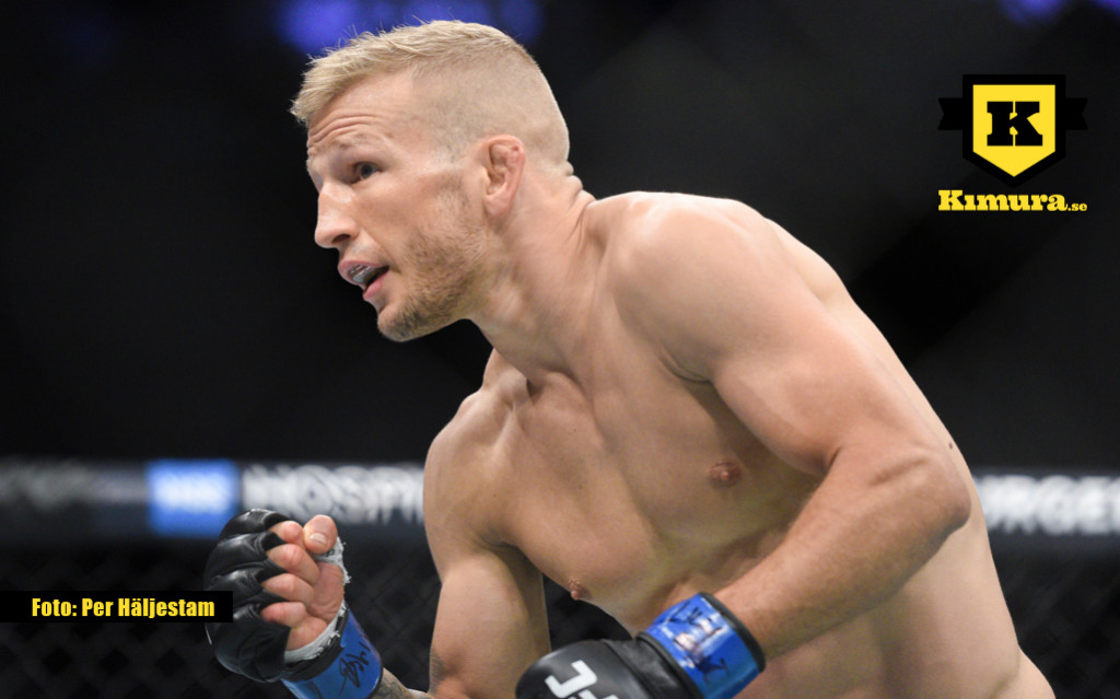 tj-dillashaw-ufc217-FIGHT