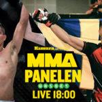 MMA-panelen ufc 228