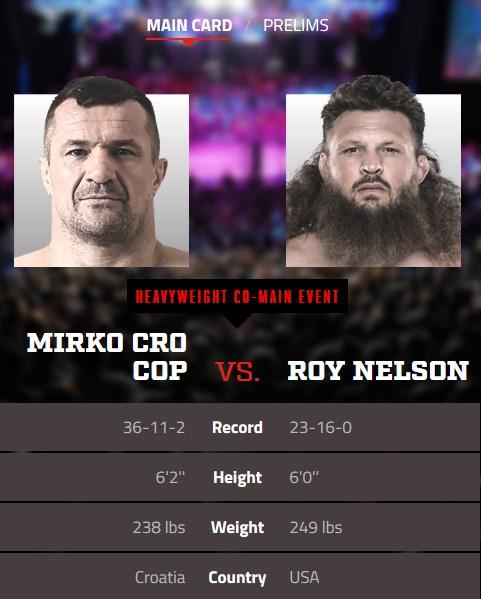 Mikro Cro Cop vs. Roy Nelson Bellator 216