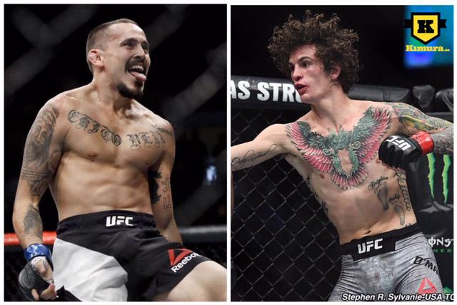 Marlon Vera vs Sean O'Malley UFC 239