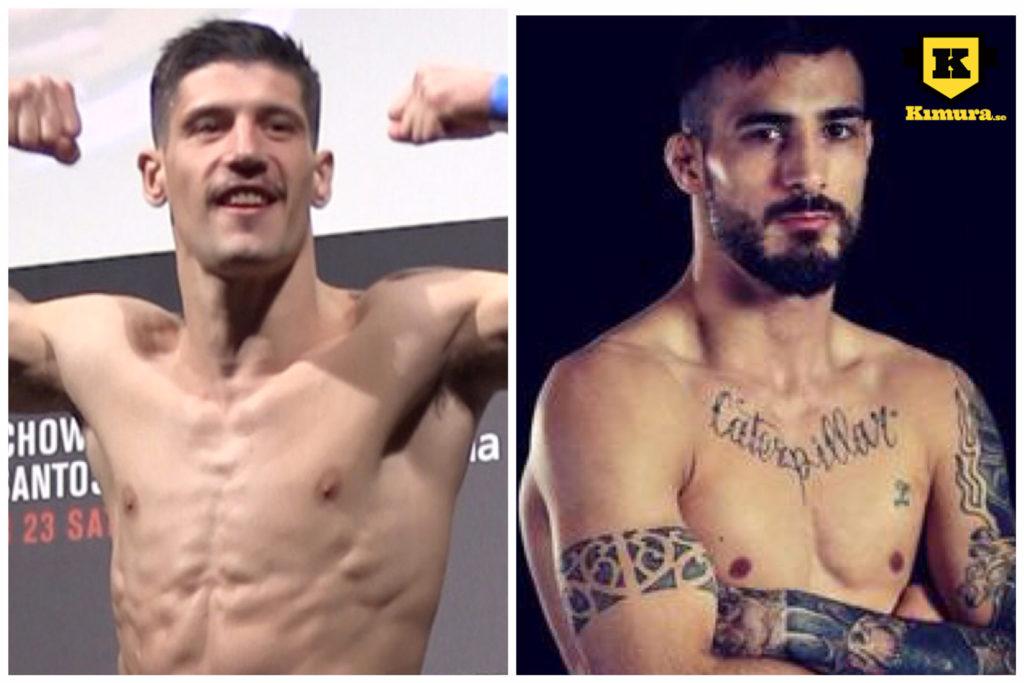 Joel Alvarez vs Danilo Belluardo UFC Sverige