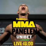 MMA-Panelen mall 18_11