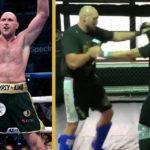Tyson Fury MMA