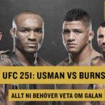 Allt inför UFC 251