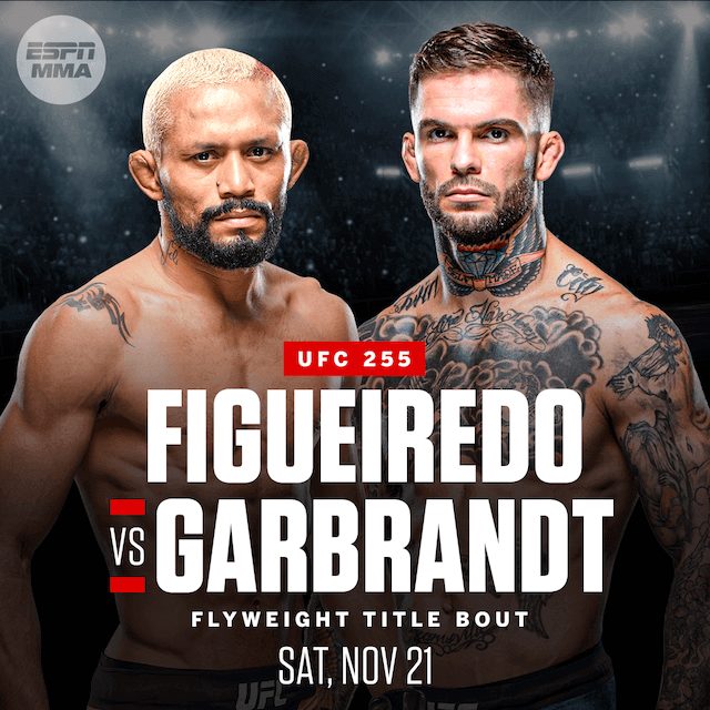 UFC 255: Deiveson Figueiredo vs