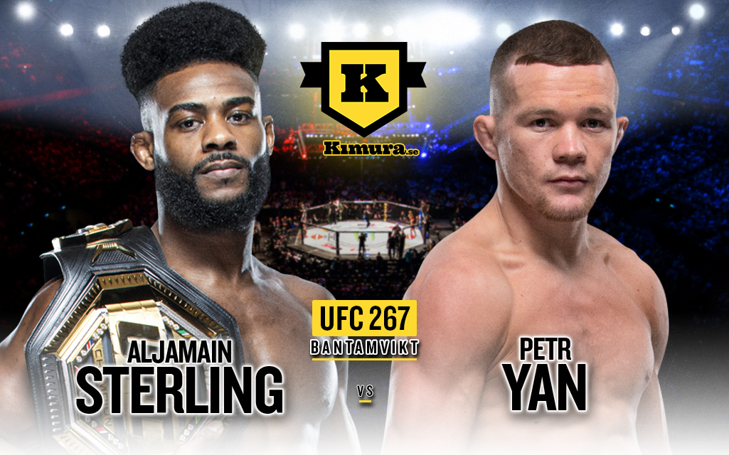 Aljamain Sterlign vs Petr Yan 2